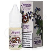 Blueberry Jam Tart eLiquid by Jammin
